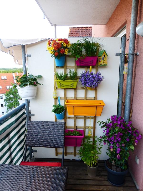 balcone piccolo, piante in verticale